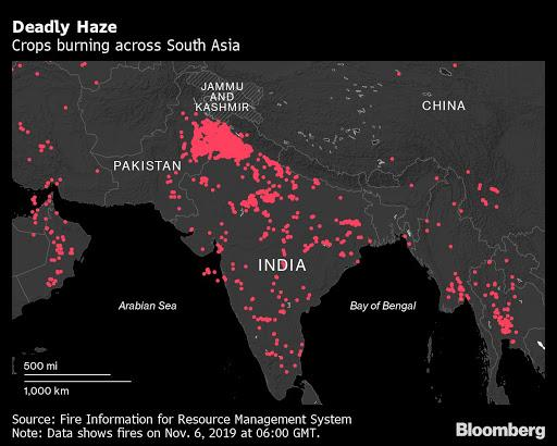 Delhi's deadly air pollution fueled by rice fields that India doesn't need