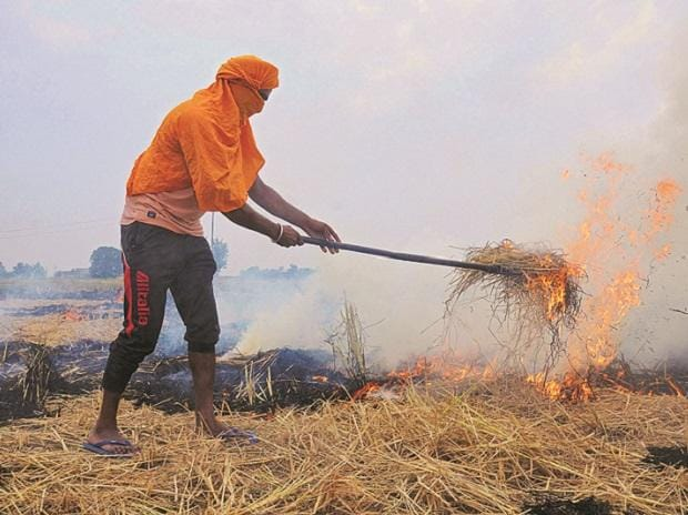 Most farmers settle for the easy and almost zero-cost option — of putting the straw on fire to reduce it to ashes. This takes little time, involves no cost for the farmer but is environmentally hazardous
