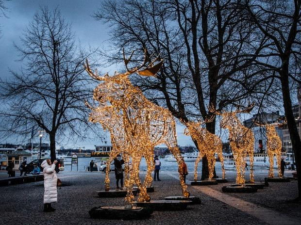 A woman takes pictures of Christmas light installations formed as elks at the Raoul Wallenberg Square in central Stockholm, Sweden.