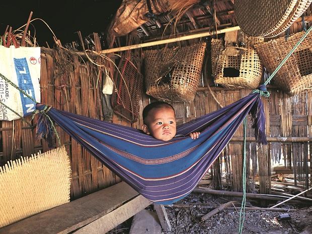 birth certificates, children, child education