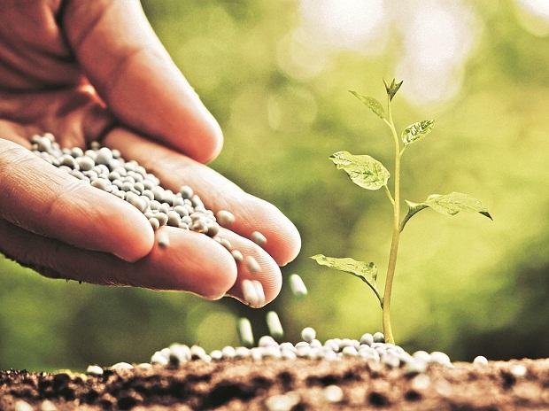 agriculture, farming