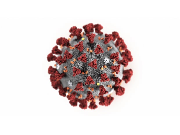 This illustration provided by the Centers for Disease Control and Prevention in January 2020 shows the 2019 Novel Coronavirus (2019-nCoV). Photo: PTI