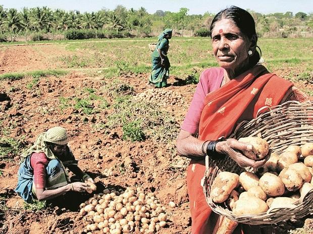 agri produce, farmers, agriculture