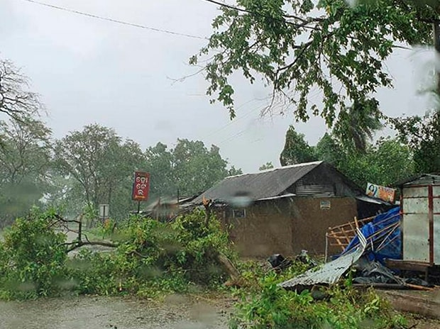 A tree uprooted due to heavy wind and rain ahead of cyclone 'Amphan' landfall, in Balasore district. Photo: PTI