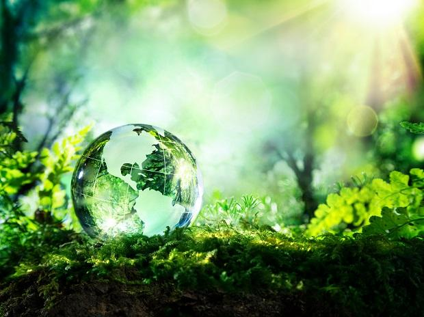 environment, biodiversity