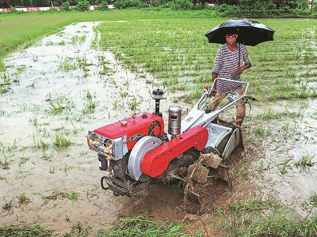 farmers, agriculture, MONSOON, produce, products, grains, apmc, market, msp, godown, cold storage, farming, farmers, economy, sowing