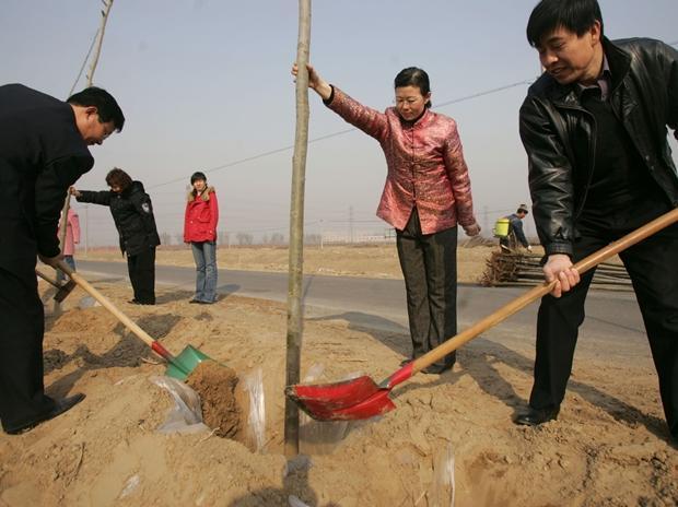 Plantation, China