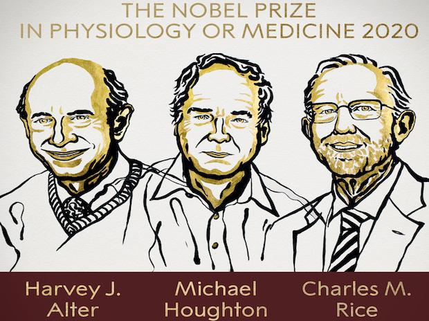The 2020 Nobel Prize in Physiology or Medicine has been awarded jointly to Harvey J. Alter, Michael Houghton and Charles M. Rice  | Credits: @NobelPrize