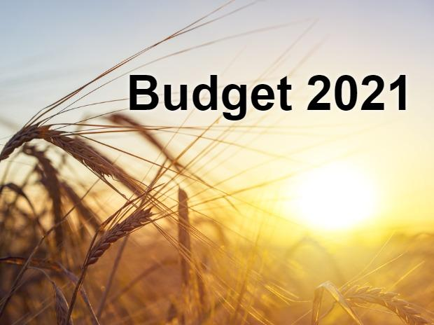 Budget 2021, agriculture