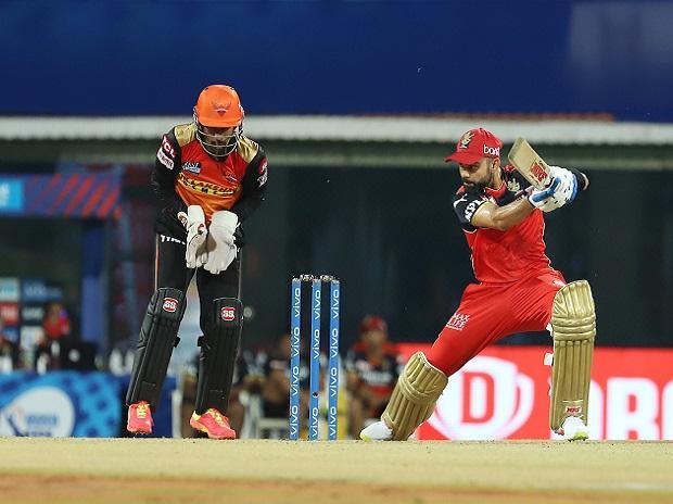 Virat Kohli, SRH vs RCB