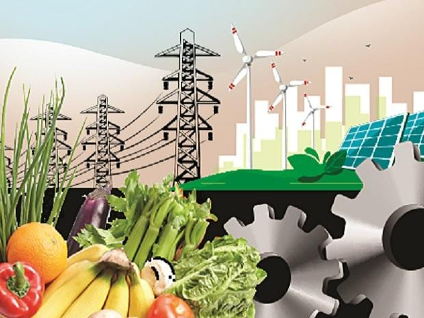 inflation, wpi, wholesale price index, economy, prices, commodities, electricity, consumption