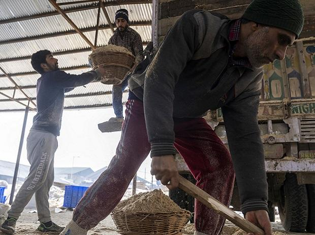 India's economic recovery stumbles, setting stage for sustained low rates