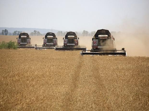 Russia, harvesting, harvesters, wheat field, farming, agriculture