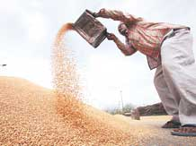 India at 71st on Global Food Security index 2021 of 113 nations