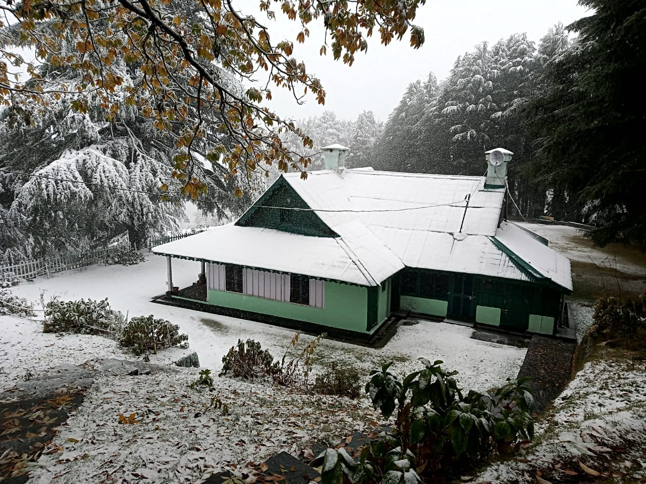 A house covered with fresh snow after the snowfall at Kalatop near Dalhousie on Monday.