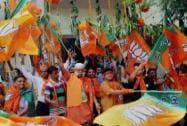 BJP wins LS polls, supporters celebrate