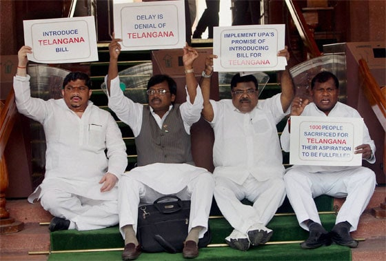 Pro- Telangana MPs hold placards during a protest at Parliament House in New Delhi