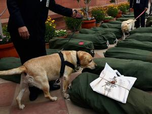 Security persons with sniffer dogs inspecting the bundles containing the copies of Union Budget 2017-18 at Parliament before they were carried to Lok Sabha in New Delhi