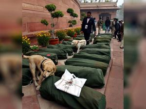 sniffer dogs inspecting the bundles containing the copies of Union Budget 2017-18 at Parliament before they were carried to Lok Sabha