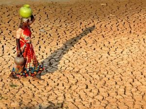 An elderly woman walks back after collecting water from a lake in drought-hit Dambadahalli near Chikmagalur in Karnataka