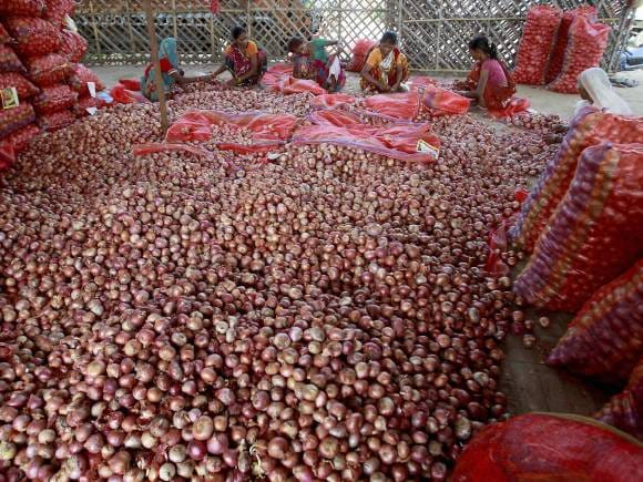 Samajwadi Party, Onion, Onion prices, Onion current price, Congress, Congress Delhi, Delhi Congress, Congress protests, Onion price hike, Congress Delhi protests
