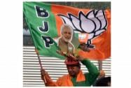Delhi Assembly Elections 2015: BJP Election Campaign