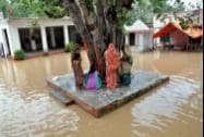Women perform worship under a Peepal tree in a locality flooded by Ramganga River in Moradabad district