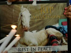 Animal lovers take part in a candle light vigil for Police horse Shaktiman at India Gate in New Delhi.