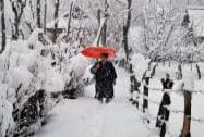 Snowfall closes Srinagar-Jammu highway