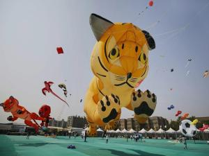 Kites of all shapes and hues on display at 29th International Kite Festival in Ahmedabad