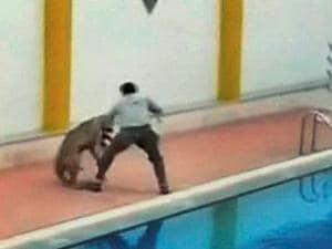 A leopard attacks a man in a school premises in Bengaluru