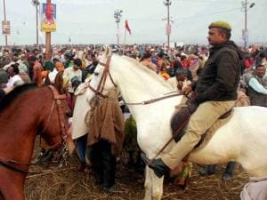 Policemen mounted on their horses maintain order as devotees arrive to take holy dip at Sangam on the occasion of Mauni Amavasya during Magh Mela festival in Allahabad