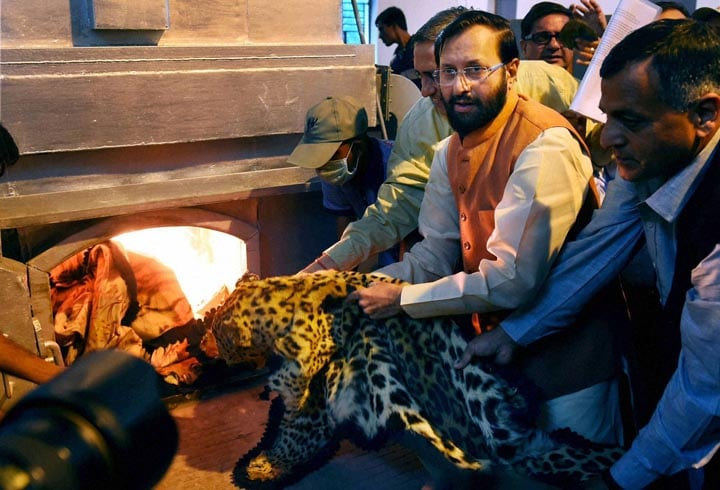 Minister of Information, Broadcasting, Environment, Forest and Climate Change, Prakash Javadekar, destroying, seized, wildlife, articles, National Zoological Park