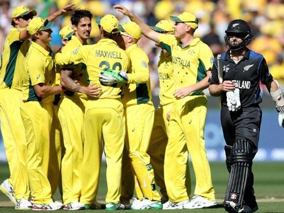 Kane Williamson, Mitchell Johnson, World Cup,  World Cup final, Australia,  New Zealand, Cricket fan