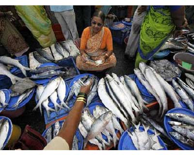 <p><b>A woman sells fish at a wholesale market at a fish harbour in Mumbai</b>