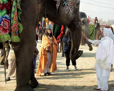 Foreign tourists visit Maha Kumbh