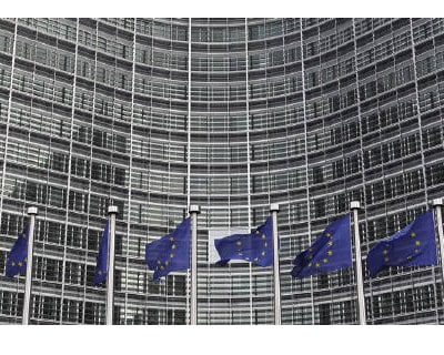 <p><b>European Union flags are seen outside the European Commission headquarters in Brussels</b> </p><p> Transparency campaigners have hauled the European Union's executive to court for withholding documents about free trade talks with India, i