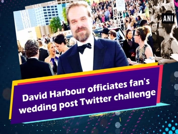 David Harbour officiates fan's wedding post Twitter challenge