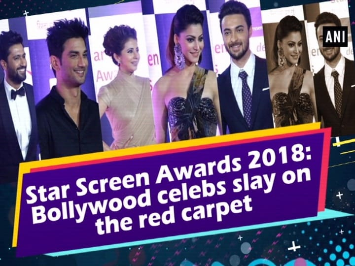 Star Screen Awards 2018: Bollywood celebs slay on the red carpet