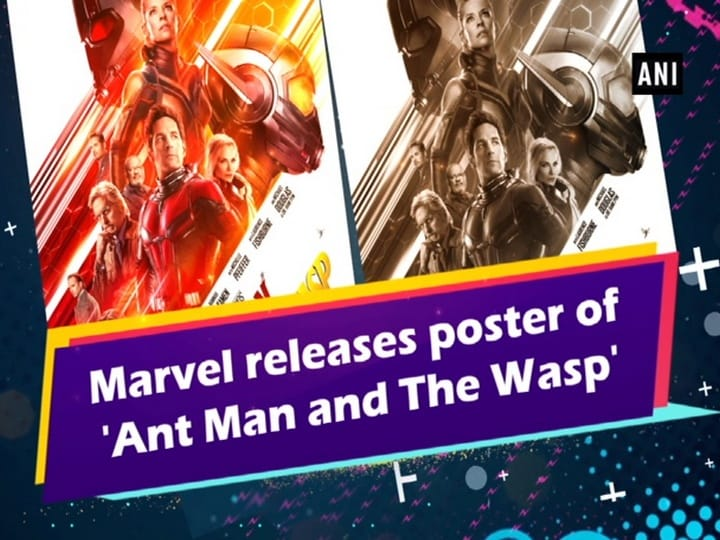 Where were Ant Man and Wasp in 'Avengers: Infinity War'? Marvel actors answer