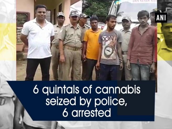 6 quintals of cannabis seized by police, 6 arrested