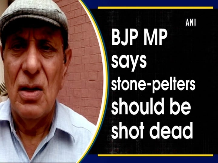 BJP MP says Stone-pelters should be shot dead