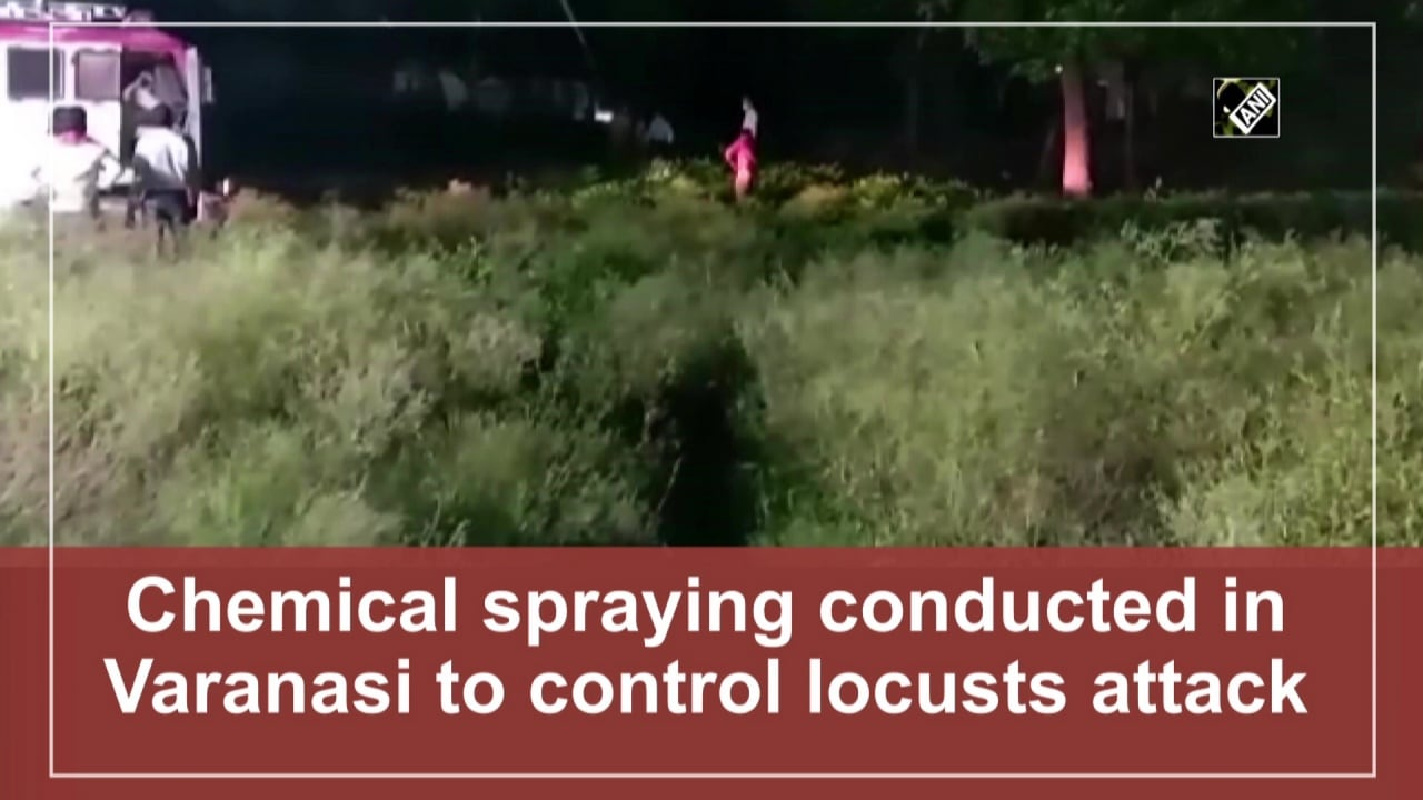 Chemical spraying conducted in Varanasi to control locusts attack