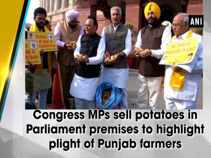 Congress MPs sell potatoes in Parliament premises to highlight plight of Punjab farmers