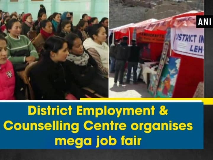 District Employment and Counselling Centre organises mega job fair