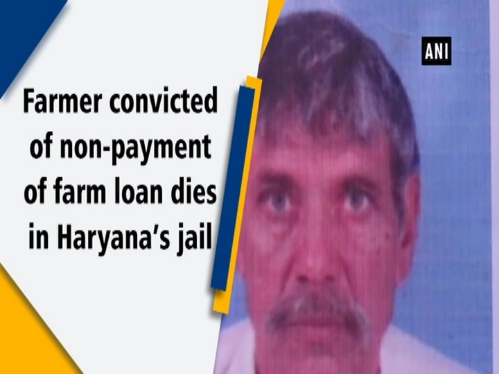 Farmer convicted of non-payment of farm loan dies in Haryana's jail