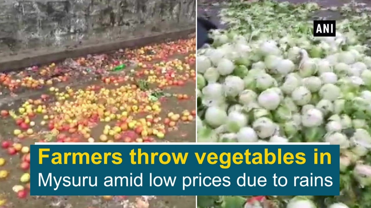 Farmers throw vegetables in Mysuru amid low prices due to rains