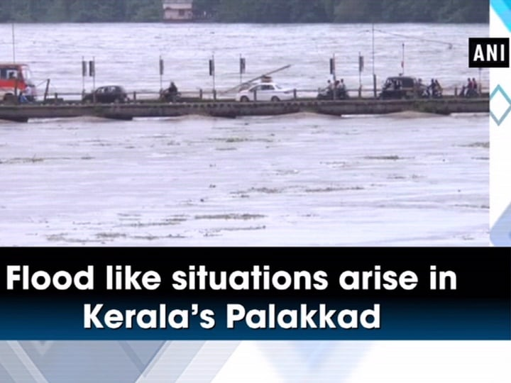 Flood like situations arise in Kerala's Palakkad