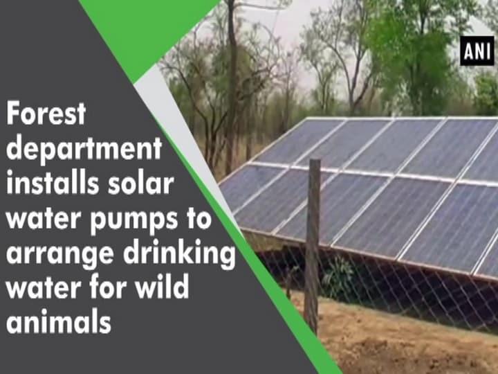 Forest department installs solar water pumps to arrange drinking water for wild animals