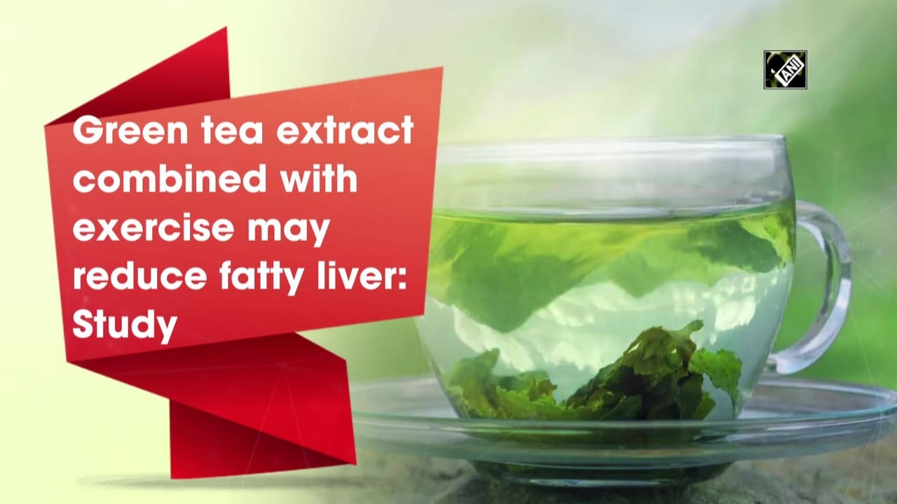 Green tea extract combined with exercise may reduce fatty liver Study thumbnail